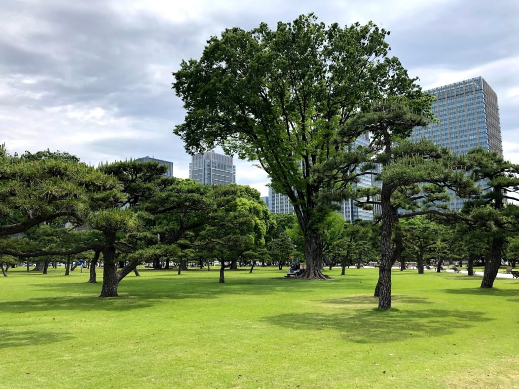 Imperial palace garden